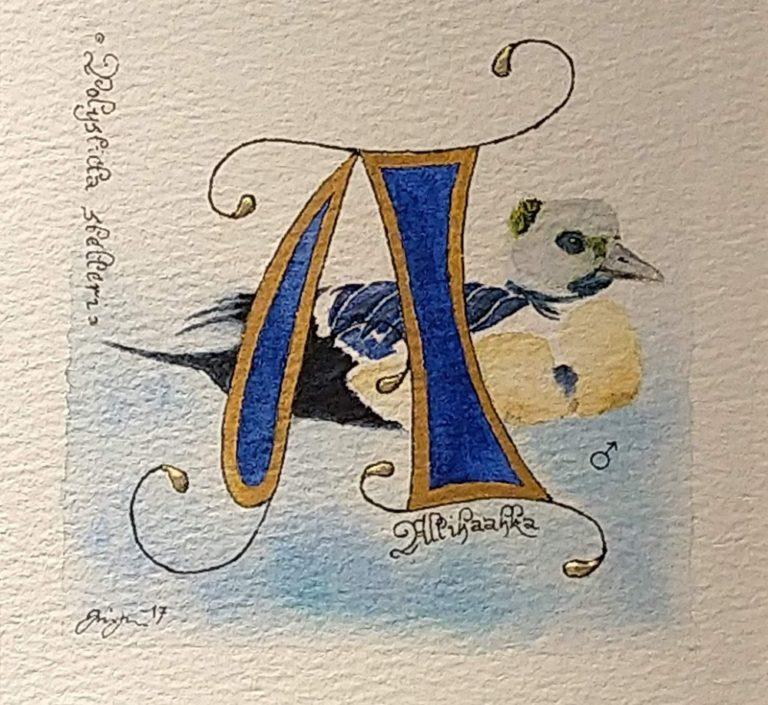 Kesäillan kalligrafiaa Lahdessa