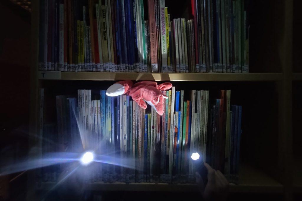 Kuvassa kettu on kirjahyllyllä pimeässä huoneessa ja siihen osoitetaan taskulampuilla.