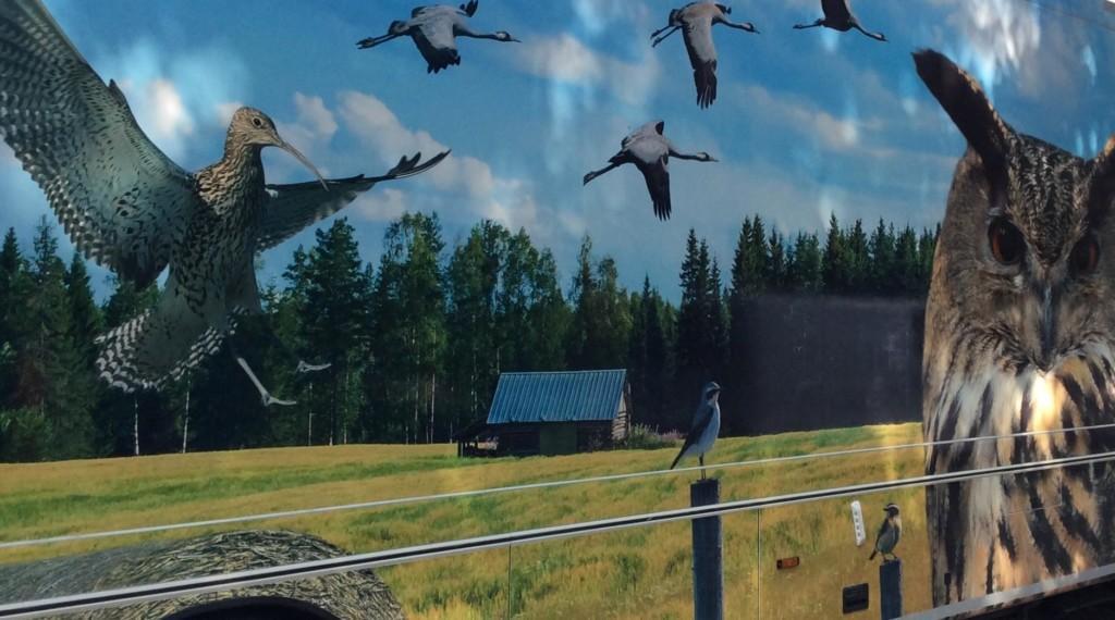 Kirjastoauto kerrostalon edessä, kyljessä isokokoisia lintuja.